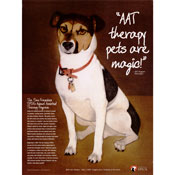SPCA Animal Assisted Therapy poster