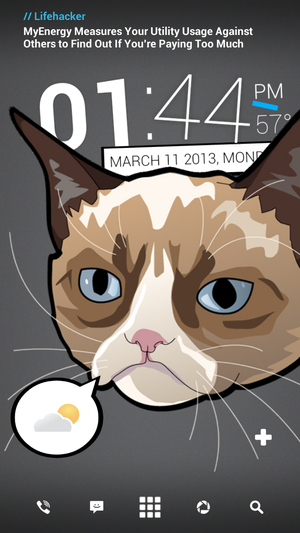 Grumpy Cat homescreen hack