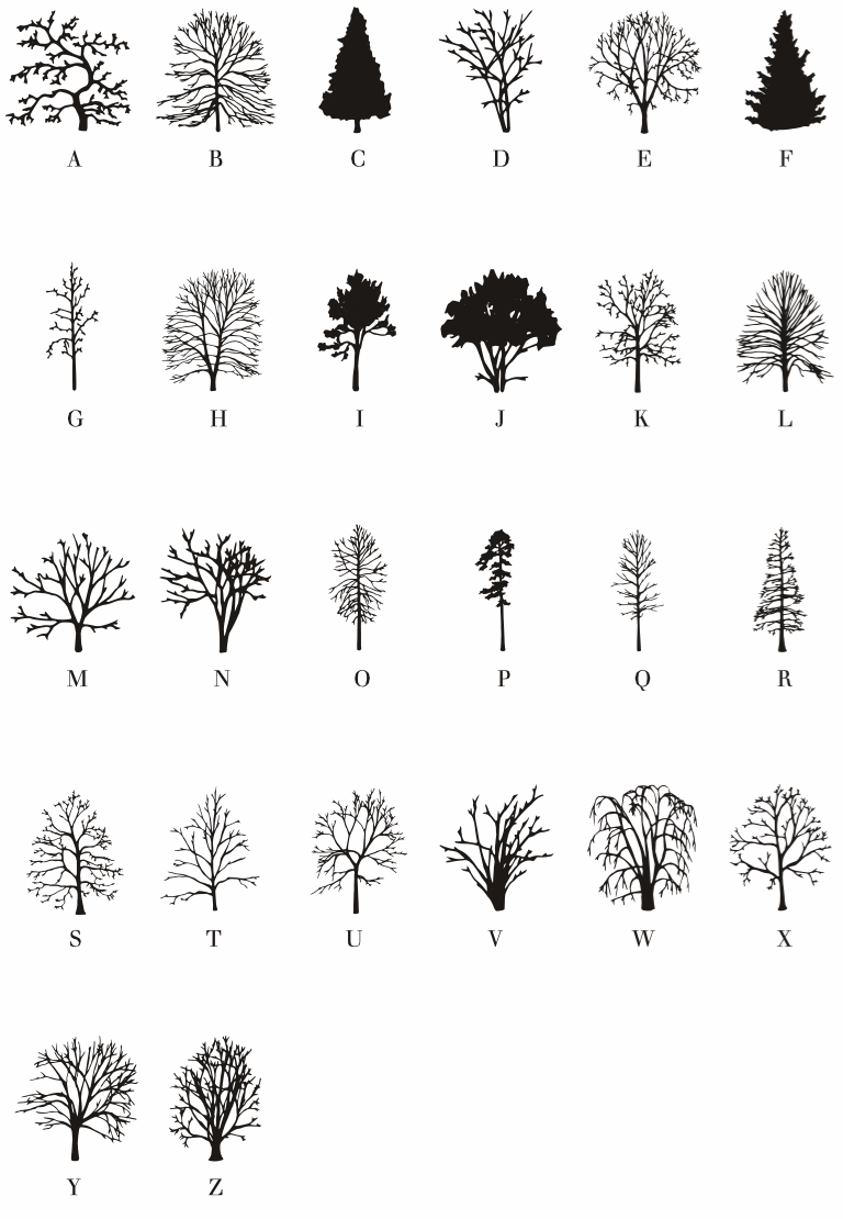 The Trees alphabet