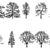 "The phrase ""about trees"" in the Tree font"