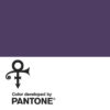 PANTONE purple Prince Love Symbol no 2 square