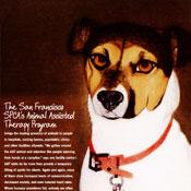 San Francisco SPCA poster