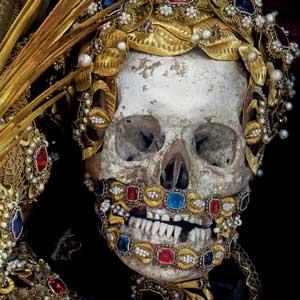 St. Albertus skull