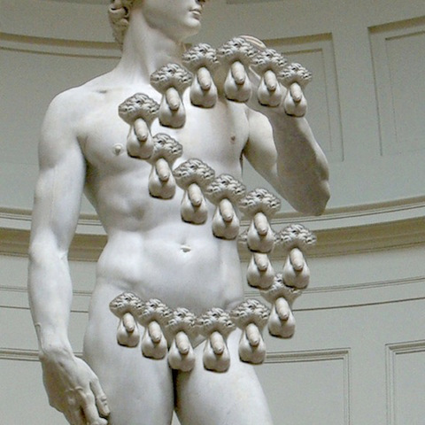 """Michelangelo 'David' """"S"""""""