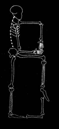 skeleton_Font_B