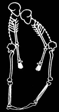 skeleton_Font_D