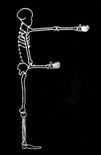 skeleton_Font_F