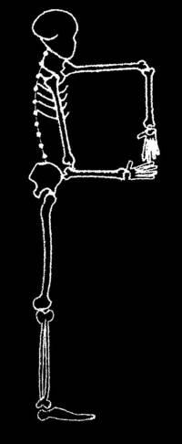 skeleton_large_P