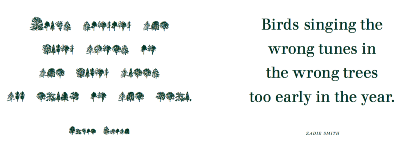 A line from Zadie Smith's novel NW, translated into Trees
